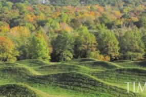 Waves of Grass: Maya Lin's 'Wave Field'